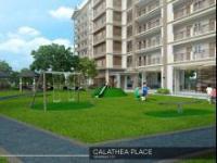 calathea-place-playground-size-small